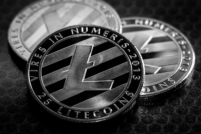 litecoin cryptocurrency total coin circulation history